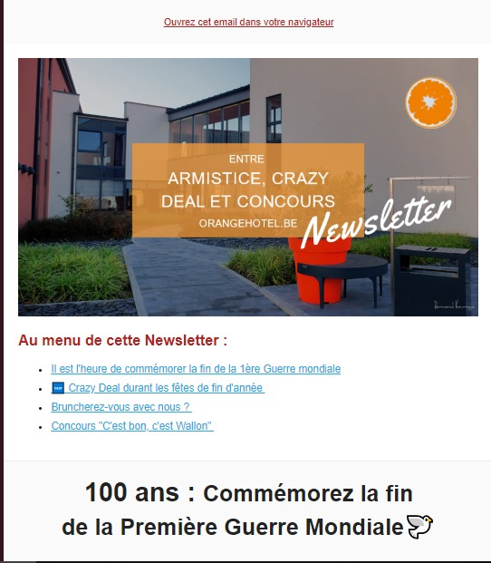 Orange Hotel : newsletter crazy deal